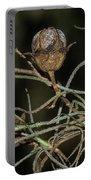 Spanish Moss On Azalea  Portable Battery Charger