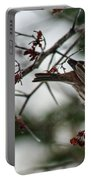 Sparrow Eating Berry Portable Battery Charger