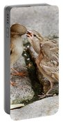 Sparrow Feeding Fledgelings Portable Battery Charger