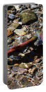 Spawning Salmon - Odell Lake Oregon Portable Battery Charger