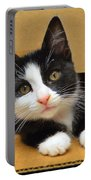 Special Delivery Tuxedo Kitten Portable Battery Charger