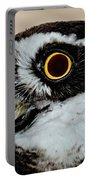 Spectacle Owl Portable Battery Charger