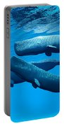 Sperm Whale Family Portable Battery Charger