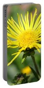 Spider Daisy Portable Battery Charger