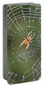 Spider In A Dew Covered Web Portable Battery Charger