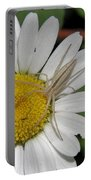 Spider On Daisy Portable Battery Charger