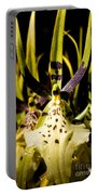Spider Orchid Portable Battery Charger
