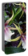 Spider Orchids Portable Battery Charger