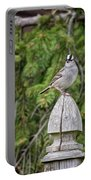 Spiffy Sparrow Portable Battery Charger