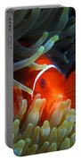 Spinecheek Anemonefish, Great Barrier Reef Portable Battery Charger