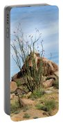 Spiny Cactus East Of Wickenburg Portable Battery Charger