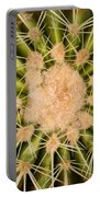 Spiny Cactus Needles Portable Battery Charger