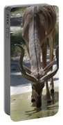 Spiral Horned Antelope Drinking Portable Battery Charger