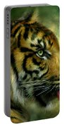 Spirit Of The Tiger Portable Battery Charger
