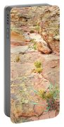Splash Of Color In Valley Of Fire's Wash 3 Portable Battery Charger