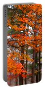 Splashes Of Autumn Portable Battery Charger