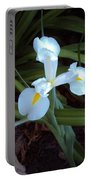 Splendor In The Shade Portable Battery Charger