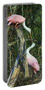 Spoonbill Kiss Portable Battery Charger