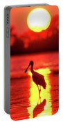 Spoonbills At Sunset Portable Battery Charger