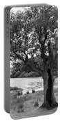 Spot The Woman And Her Dog- Behind The Tree Portable Battery Charger
