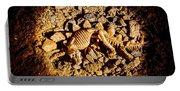 Spotlight On A Extinct Stegosaurus Portable Battery Charger