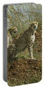Spotted Cats Portable Battery Charger