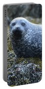 Spotted Coat Of A Harbor Seal Portable Battery Charger