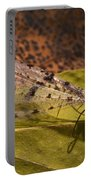 Spotted Mayfly Portable Battery Charger