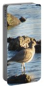 Spotted Sandpiper Keeping Sentry On The Bay Portable Battery Charger