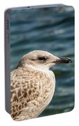 Spotted Seagull Portable Battery Charger