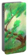 Spring Green Portable Battery Charger