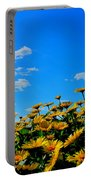 Spring 2015-pic 31 Portable Battery Charger