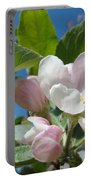 Spring Apple Blossoms Pink White Apple Trees Baslee Troutman Portable Battery Charger