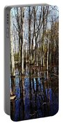 Spring At The Pond Portable Battery Charger