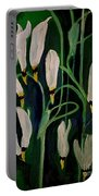 Spring Ballet Portable Battery Charger