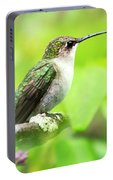 Spring Beauty Ruby Throat Hummingbird Portable Battery Charger