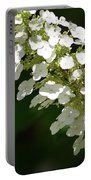 Spring Bloomers 2 Portable Battery Charger
