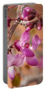 Spring Blooms In Nevada Portable Battery Charger