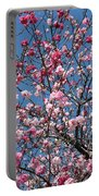 Spring Blossoms Against Blue Sky Portable Battery Charger