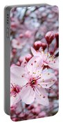 Spring Blossoms Art  Pink Tree Blossom Baslee Troutman Portable Battery Charger