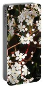 Spring Blossoms Macro Portable Battery Charger
