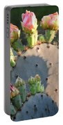 Spring Cactus 15 Portable Battery Charger