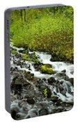 Spring Cascades Portable Battery Charger