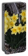 Spring Cheerleaders - Daffodils Portable Battery Charger