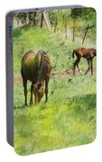 Spring Colts Portable Battery Charger