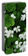 Spring Cover Portable Battery Charger