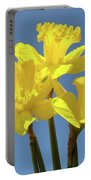 Spring Daffodil Flowers Art Prints Canvas Framed Baslee Troutman Portable Battery Charger