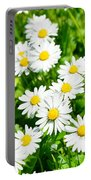 Spring Daisy In The Meadow Portable Battery Charger