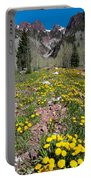Spring Dandelion And Mountain Landscape Portable Battery Charger