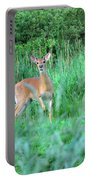 Spring Deer Portable Battery Charger